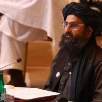 Taliban Talks