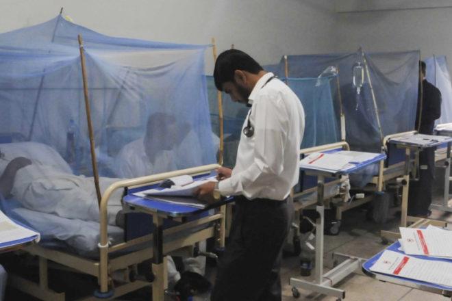 پنجاب میں ڈینگی پھر سر اٹھانے لگا، 5 نئے کیس رپورٹ