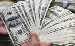 ڈپٹی گورنر اسٹیٹ بینک نے ڈالر کی قیمت میں اضافے کی وجہ بتا دی