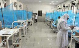 پختونخوا کے اسپتالوں میں ڈینگی کے مریضوں کی تعداد میں تیزی سے اضافہ