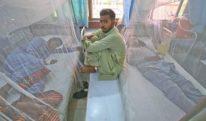 پنجاب میں ڈینگی سے ہلاکتیں بڑھنے لگیں، لاہور بری طرح متاثر