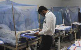 خیبر پختونخوا میں ڈینگی کے مریضوں کی تعداد 3800 تک پہنچ گئی
