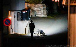 ناروے تیر کمان حملہ: ملزم دہشت گرد یا ذہنی مریض؟
