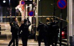 ناروے کی سپر مارکیٹ میں نامعلوم شخص کا تیر کمان سے حملہ، متعدد ہلاکتیں